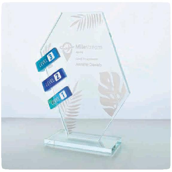 awards glass